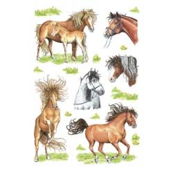 Etiket Herma 3307 getekende paarden 18stuks