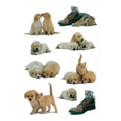 Etiket Herma 5606 puppy