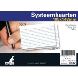 Systeemkaarten A6 105x148mm 100 stuks