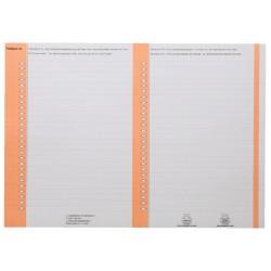 Ruiterstrook Elba Nr 8 138x60mm lateraal oranje